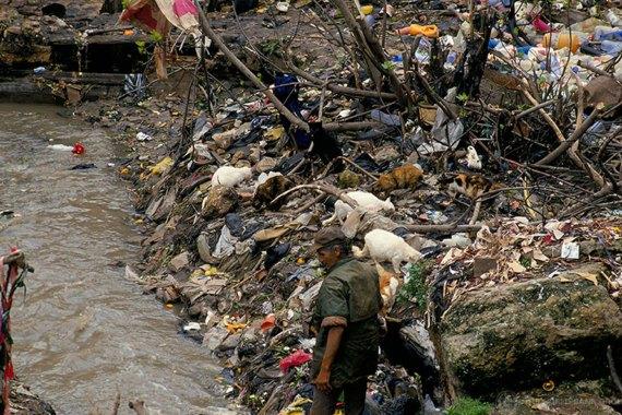 Exposição à poluição ambiental mata quase 7 milhões de pessoas por ano, alerta PNUMA