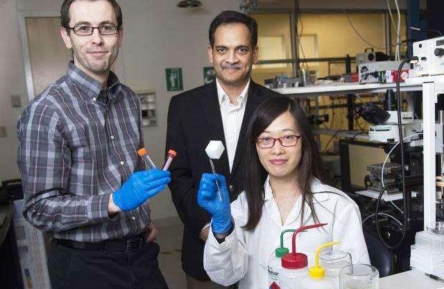 Nova tecnologia de limpeza ambiental livra a água do óleo